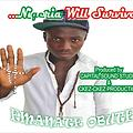 NIGERIA WILL SURVIVE By Emanate