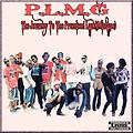 P.L.M.G-The Journey To The Promised Land(Mixtape)mp3..320Kbps