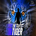 MashAllah (Ek Tha Tiger) - DjSumit (Club Edit)