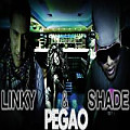 Linky & Shade - Pegao (Www.PupiMania.CoM)