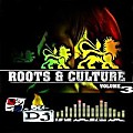 Roots & Culture Vol.3 by DJ RAGA