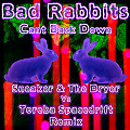 Bad Rabbits - Can't Back Down - Sneaker & The Dryer Vs Toreba Spacedrift Remix