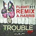 Trouble Remix (ft. A.Harris)