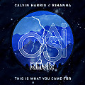 Calvin Harris & Rihanna - This Is What You Came For (Casi Remix)