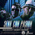 Gran Chester Ft. Magnate & Valentino - Sexo Con Pasion (Official Remix) (RFM)