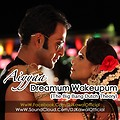 Aiyyaa - Dreamum Wakeupum (The Big Bang Dutch Theory) - DJ Kawal