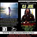 CJ Joe - Radio Interview on The Black and White Radio Show Pt. 1 of 2 (5-23-17)