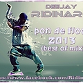 Ridinaro - pon de floor 2013 (best of mix)