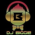 DJ BIGGIE HOUSE MIX VOL II 2016