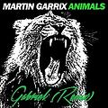Martin Garrix-Animals (Gabriel Remix)