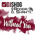 DJ Shog & Roger Shah - Without You (extended mix)