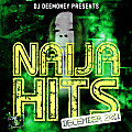 DJ Dee Money Presents Naija Dec 2011