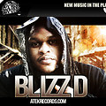 BLIZZ D-DICE PINE APPLES FREESTYLE