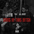LilHerb - Gang In This Bitch (Feat. Lil Bibby)
