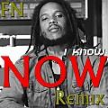 FN - Now I Know (Stephen Marley Remix)