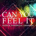 Can You Feel It (feat. Patrick Sandim) [Extended]