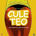 Ceky Viciny Ft. Black Jonas Point – Culeteo [RumbaComercial.Com]