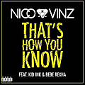 Nico & Vinz - That's How You Know (Feat. Kid Ink & Bebe Rexha) / ☆☆☆☆