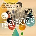 Lily Wood and the Prick ft Robin Schulz - Prayer in C (Bastard Batucada Reza braba Remix)