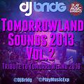 Tomorrowland Sounds Session 2013 VOL 2 mixed by Dj Bridg
