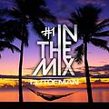 DJ Tofman - In The Mix #1 // Tropical House Music [FREE DOWNLOAD]