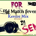 Big Mathch fever Kawadi mix(16.20min)