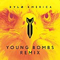 America (Young Bombs Remix)