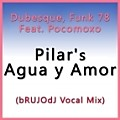 Dubesque, Funk 78 Feat. Pocomoxo – Pilar's Agua y Amor (bRUJOdJ Vocal Mix)