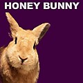 Honey Bunny - Sweet Dreams Everybody's Looking For Something FX02 (Acapella Tool)