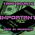 Trae Blunts - Important [Prod. By @Borovicci]