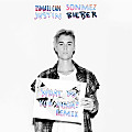 Justin Bieber - What Do You Mean (Ismail Can Sonmez Remix)