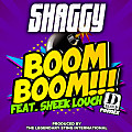 Shaggy ft. Sheek Louch & Shhean - Boom Boom (Remix)